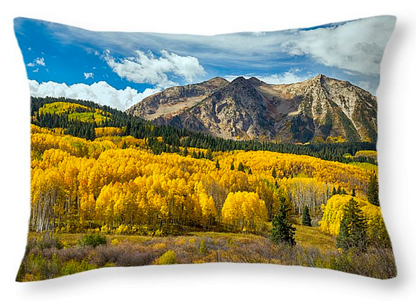 Colorado Rocky Mountain Fall Foliage Throw Pillow 20x14
