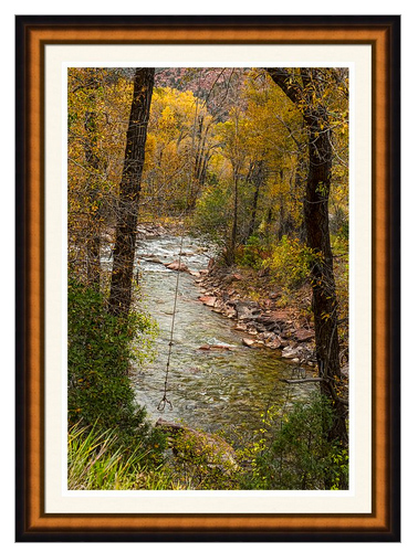 Trout Fishing Stream Crossing Swing Framed Print