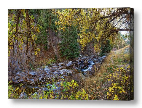 Boulder Creek Autumn View Canvas Art Print