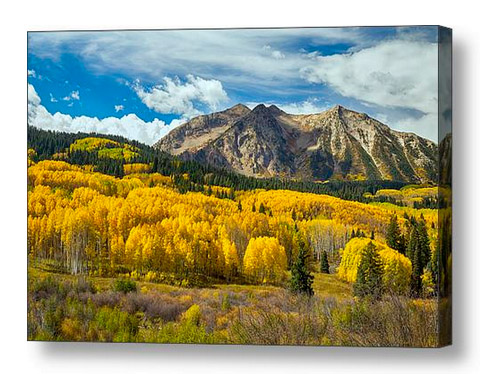 Colorado Rocky Mountain Fall Foliage Canvas Print