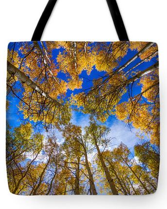 Colorful Aspen Forest Canopy Tote Bag 18 x 18