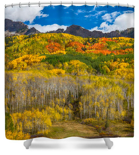 Colorful Colorado Kebler Pass Fall Foliage Shower Curtain