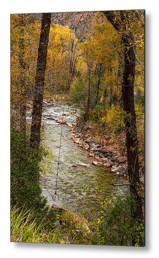 Trout Fishing Stream Crossing Swing Metal Print