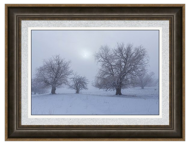 Snowy Foggy Sun Burning Framed Print