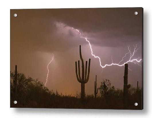 Sonoran Saguaro Southwest Desert Lightning Strike Acrylic Print