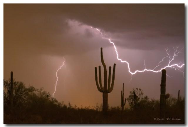 Sonoran Saguaro Southwest Desert Lightning Strike
