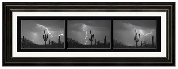Southwest Saguaro Cactus Desert Storm Panorama Bw Framed Print
