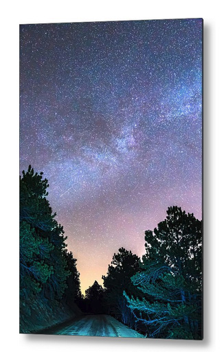 Forest Night Light Metal Print