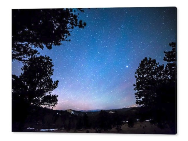 Starry Rocky Mountain Forest Night Canvas Print