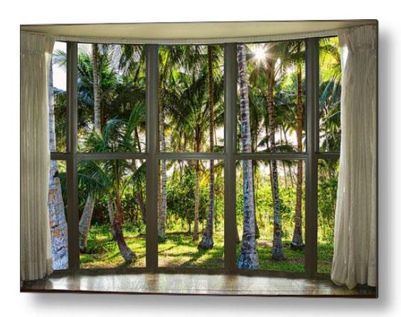 Tropical Jungle Reflections Bay Window View Metal Print