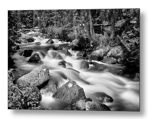 Cascading Rocky Mountain Forest Creek Bw Metal Print