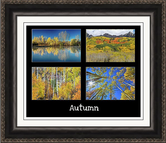Autumn Season Framed Print
