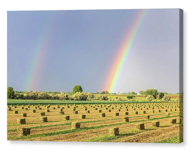 Just Another Country Rainbow Canvas Print