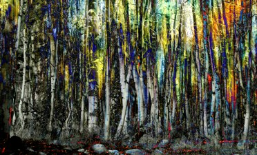 Impressionism Forest Woods