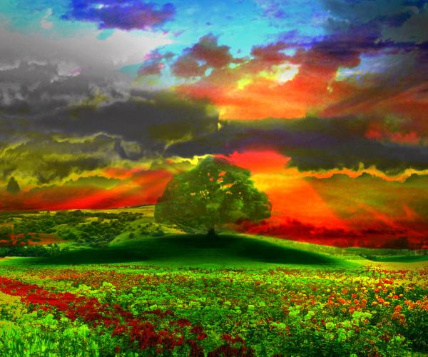 Prints Landscape Art