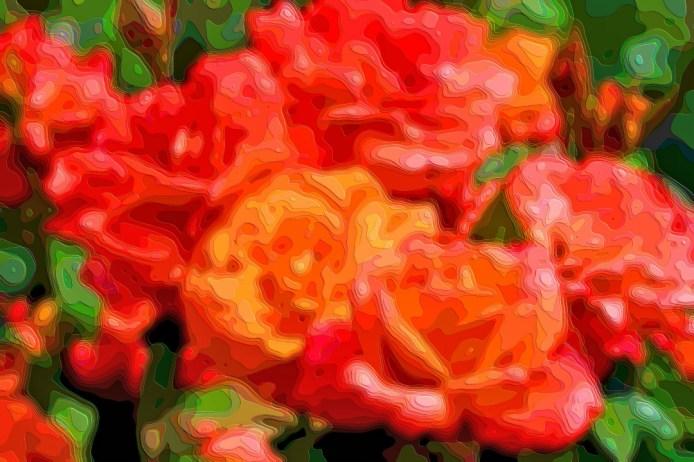 Art Print Roses