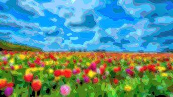 Landscape Art Flower Field