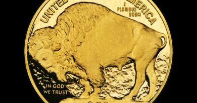 Nickel  Karat Coin Gold Bull  - Alexas_Fotos / Pixabay