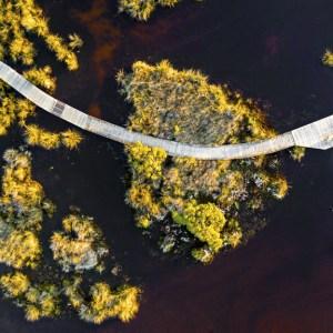 Marsh Land - Aerial Artwork
