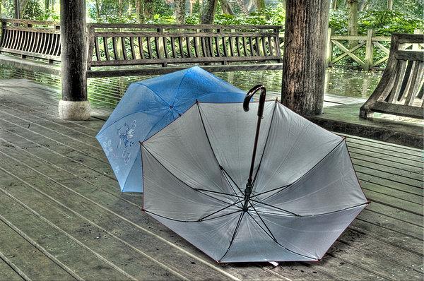 Respite from the Rain -  Hangzhou, China