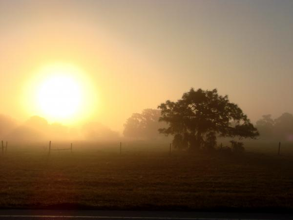 https://i0.wp.com/fineartamerica.com/images-medium/country-morning-sunrise-kimberly-camacho.jpg