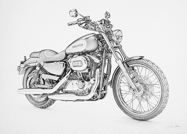 Harley Davidson 1200 Custom Drawing by Regan Peters