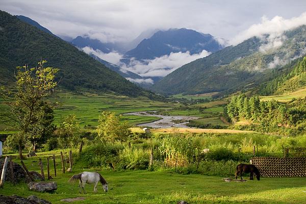 idyllic landscape arunachal pradesh