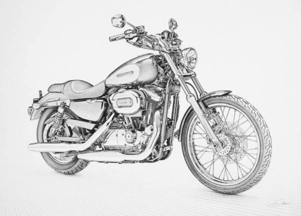 Harley Davidson 1200 Custom Drawing by Regan Peters
