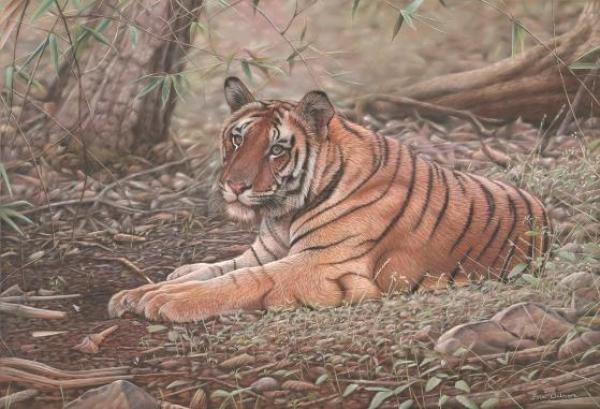 eric-wilson-tiger-pastel