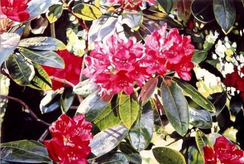 floral-watercolor-artist