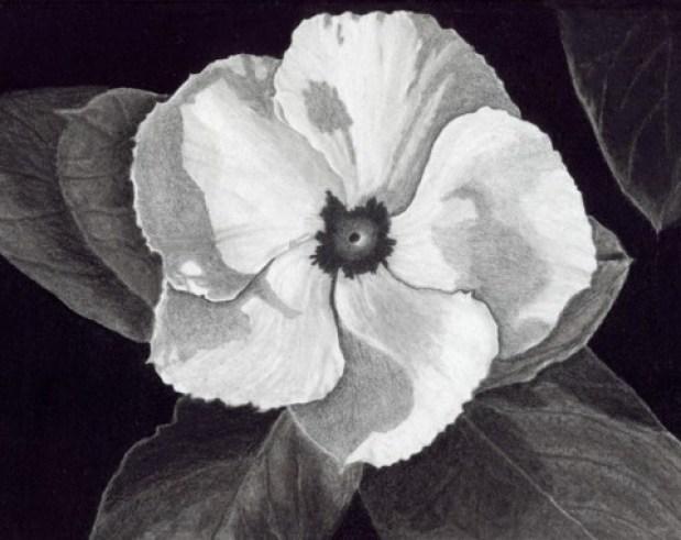 floral-art