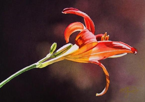 beautiful-watercolor-flower