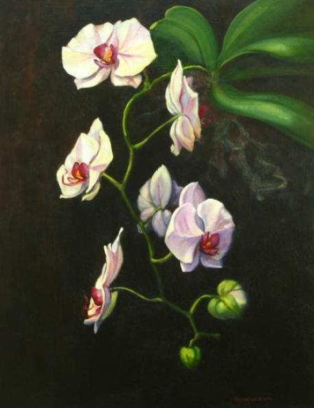 white-orchid-paintings