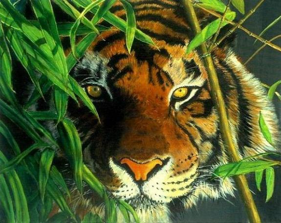 tiger-oil-painting