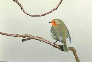 small-bird-painting
