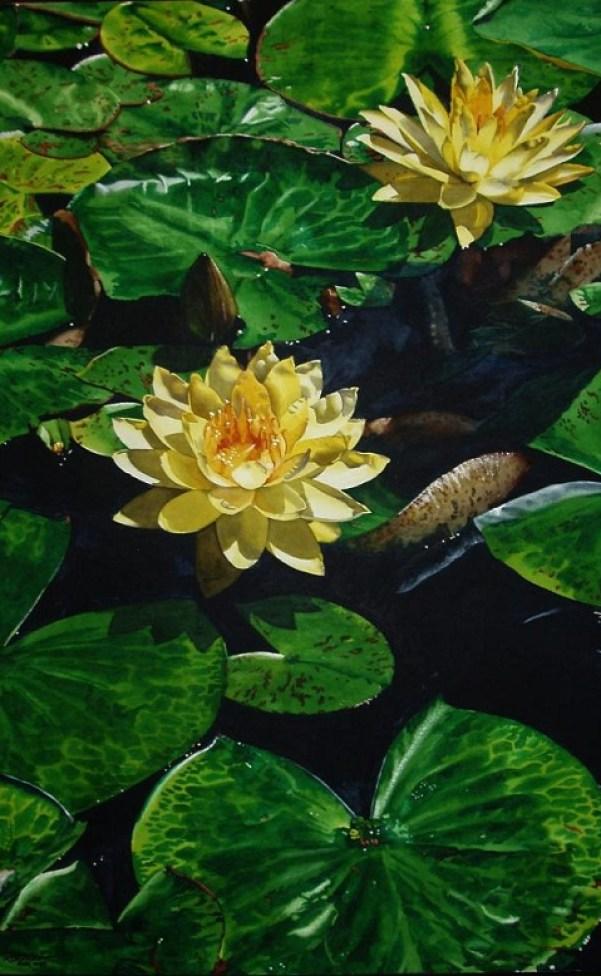 lotus-paintings