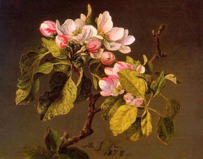 martin-johnson-heade-prints