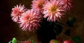 flower-paintings-oil