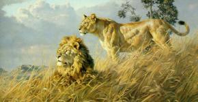wildlife-paintings