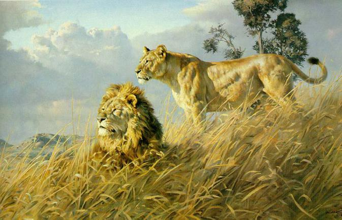 wildlife-paintings