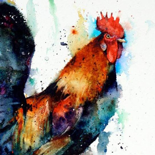 watercolor-rooster
