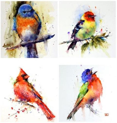 bird-watercolor-paintings
