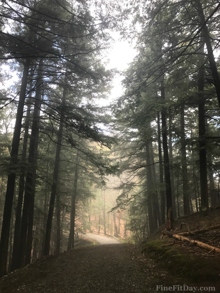 Run It - Rave Run. Trail running in Woodstock, Vermont (plus links to gorgeous running routes on the seacoast of NH,; Brooklyn, NYC; and Seattle, WA!)