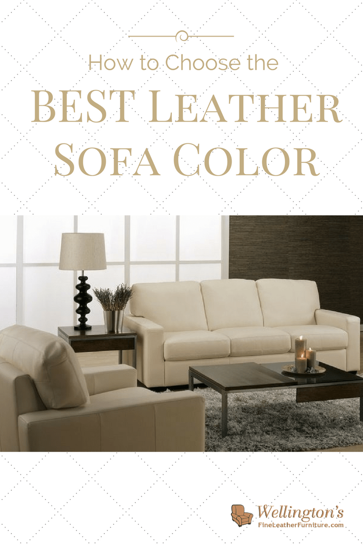 color sofas living room nautical themed how to choose the best leather sofa for your