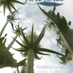 2019 Fine Lines Summer Issue