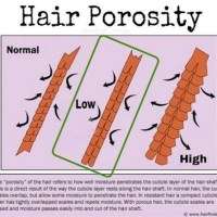 How to Moisturize & Seal Low Porosity Hair (that's also fine)