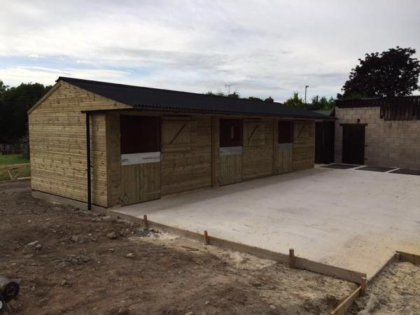 12 x 36 Stable Block Shiplap Timber