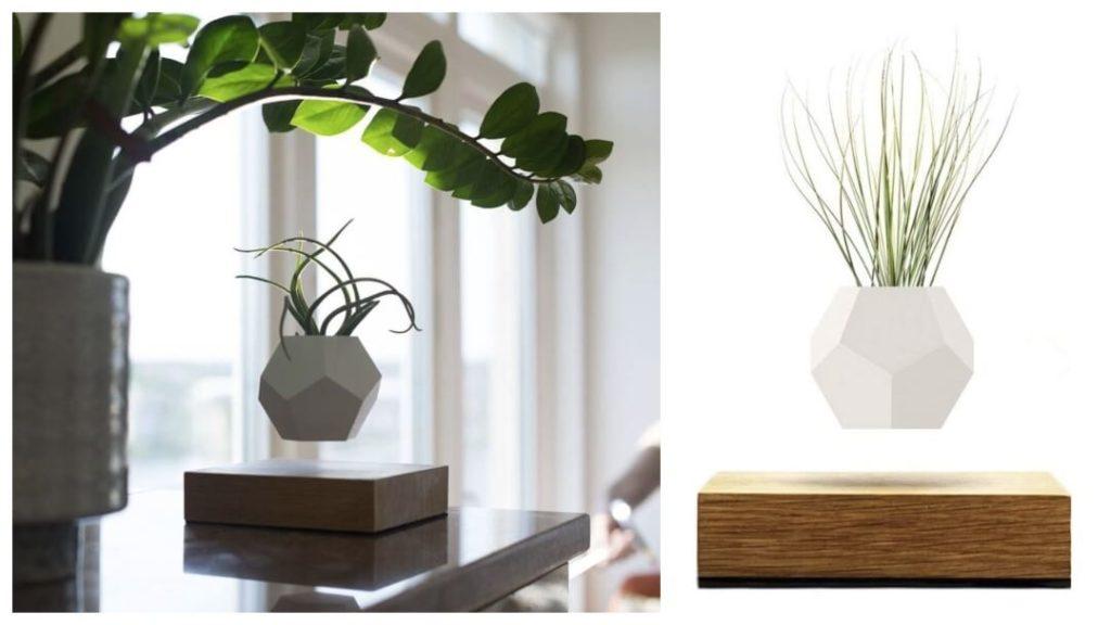 Presenttips till honom: Flyte, Lyfe Planter