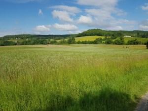 fields near Lascabanes