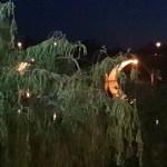 night on the Tarne